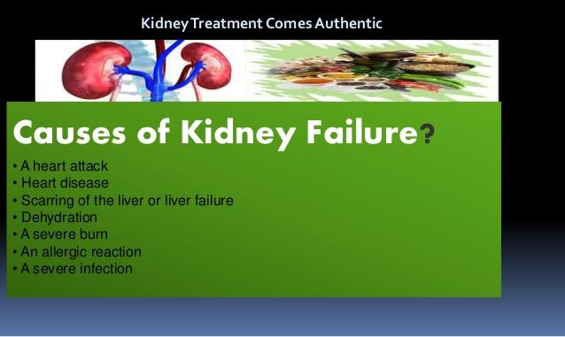 best-ayurvedic-medicine-for-kidney-failure-3-638